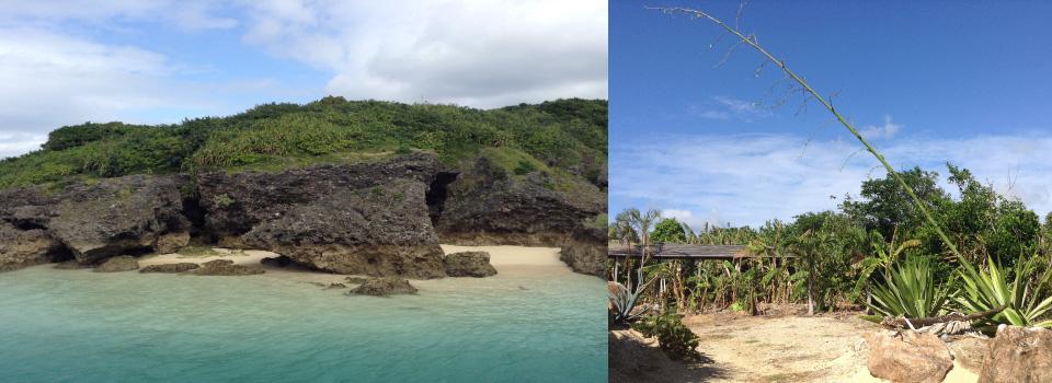 Epona Island